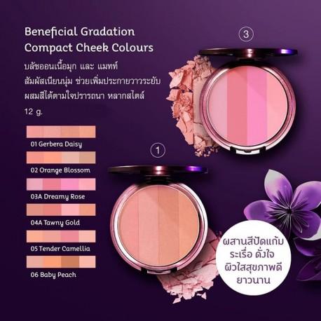 Oriental Princess Gradation Compact Cheek Colours